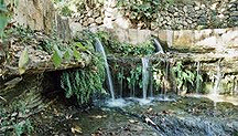 Национальный парк Эйн Хемед